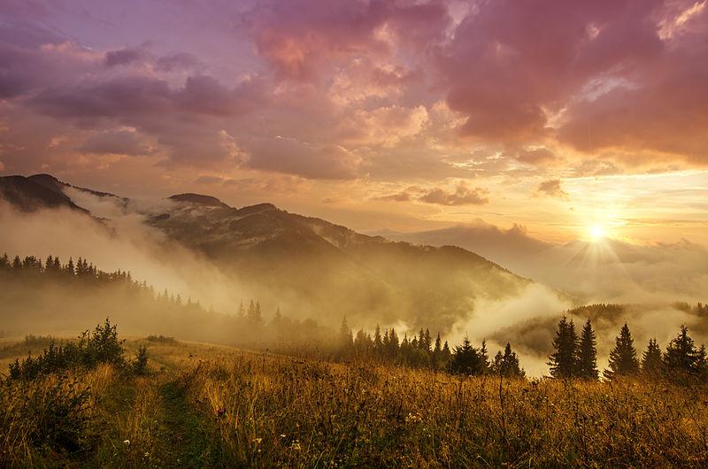 Сільська ідилія, звивисті річки і хмари, що біжать полями: літо в Україні з висоти пташиного польоту - Цензор.НЕТ 3864